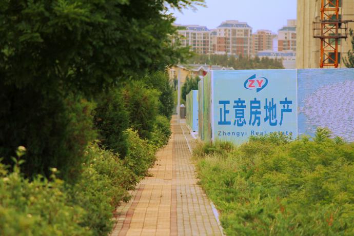 zheng yi bushy sidewalk